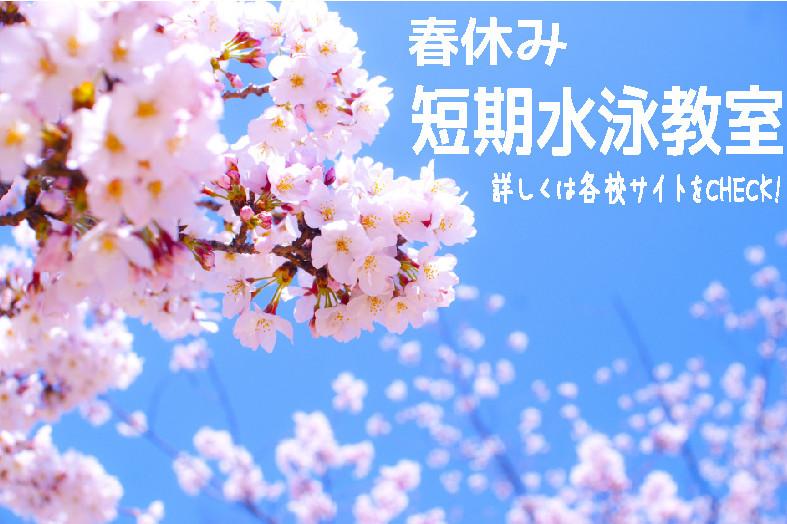 春短期2017